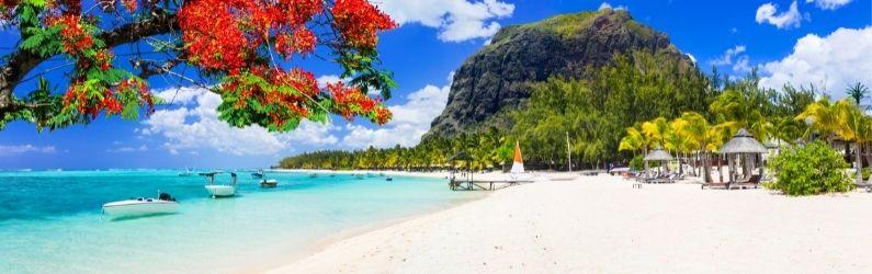 Компания на Маврикии